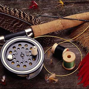 Охотничьи и рыболовные магазины Вельска